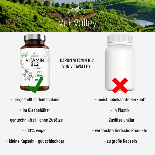 Vergleich Vitamin B12 Vitavalley