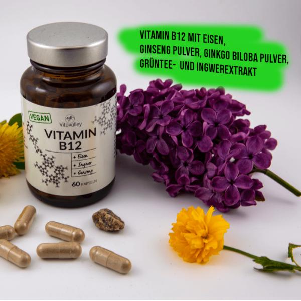 Das macht Vitamin B12 von Vitavalley so besonders